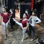 Harmony63015 30x45 copia